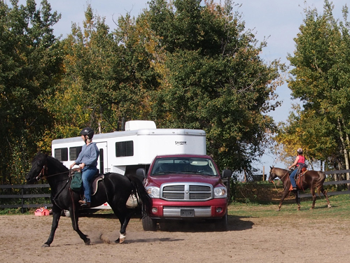 Haul-Ins at Horseman's Park Alberta