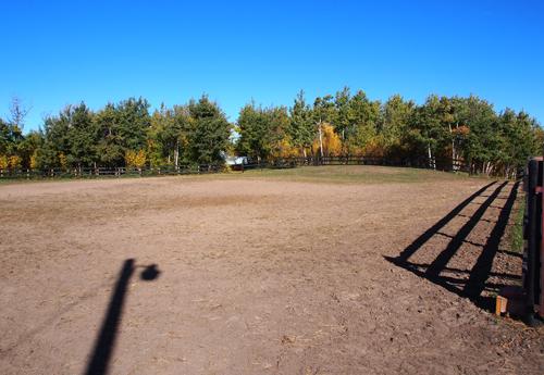 Horseman's Park upper arena