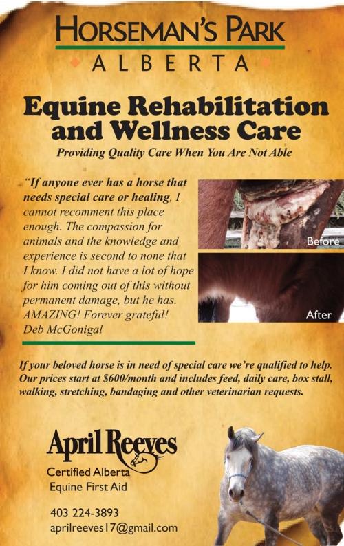 Horseman's Park Alberta offers Equine Rehabilitation and Wellness care
